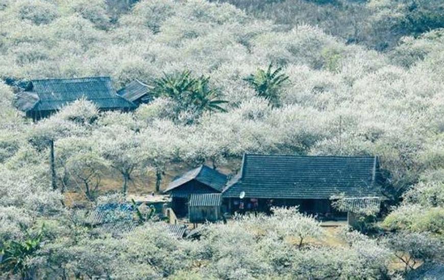 La nature de Moc Chau